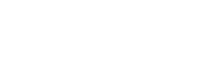Minority Conference 2021 logo
